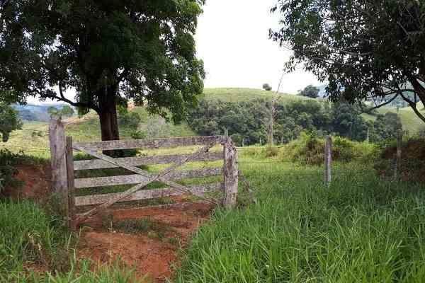 Abertura de porteira coloca à prova a funcionalidade do Marchador no trabalho da fazenda